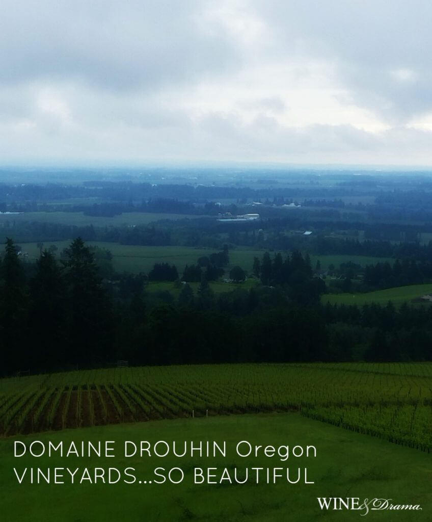 domaine-drouhin-oregon-winery
